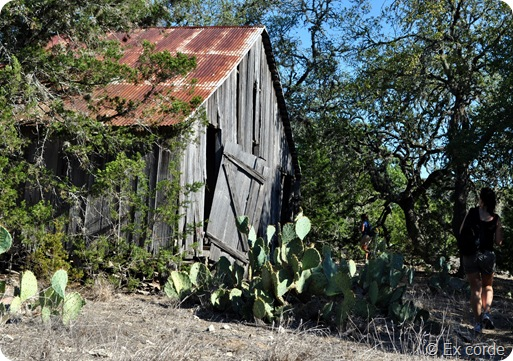 Hike Hill Country State Natural Area_Ex corde (17)