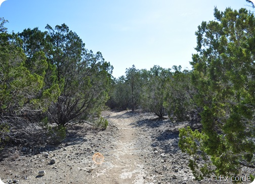 Hike Hill Country State Natural Area_Ex corde